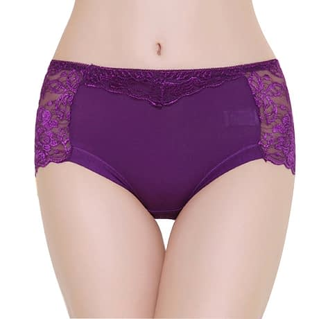 Women's Cotton Underwear, Seamless Briefs, Sexy Panties, Full Transparent Lace 4